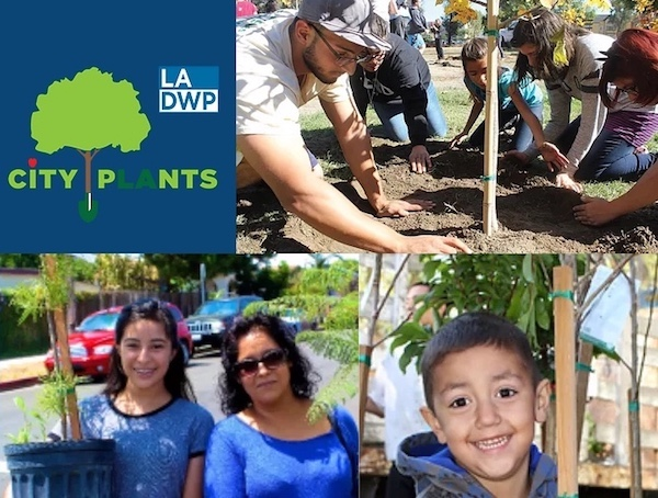 An arborist shows children how to plant a tree. A mom and daughter pose with their two new trees. A boy is proud to have adopted his first tree.
