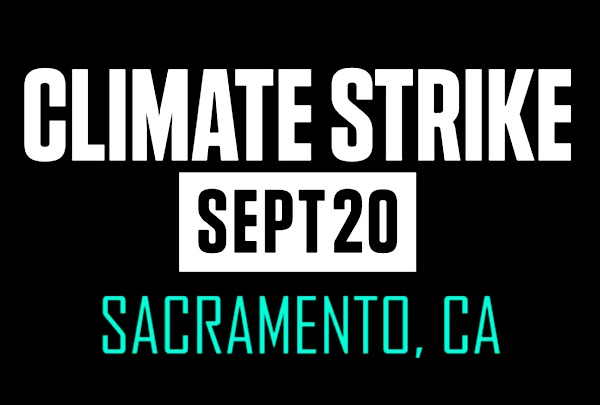 Poster announcing the date of the next local Climate Strike. Graphic.