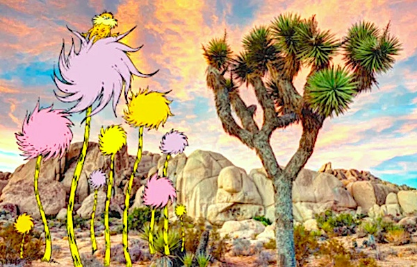 A Joshua Tree shown side-by-side with an a colorful cartoon tree from a children's book.